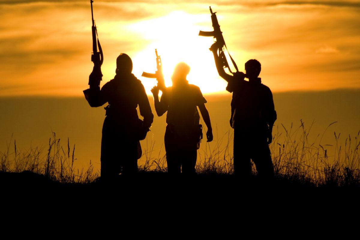 ADEVARUL DESPRE TERORISM