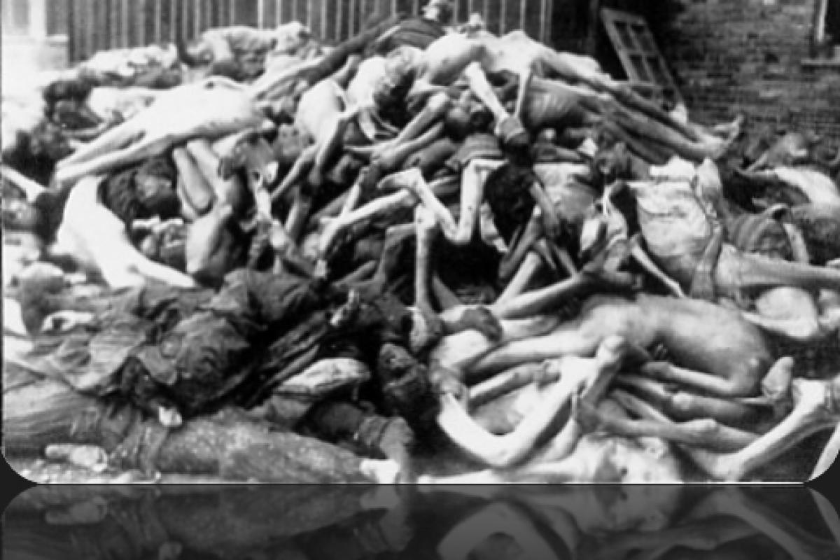 Noua Ordine Mondiala si pregatirile decimarii populatiei cu 50% – Descoperiri Socante