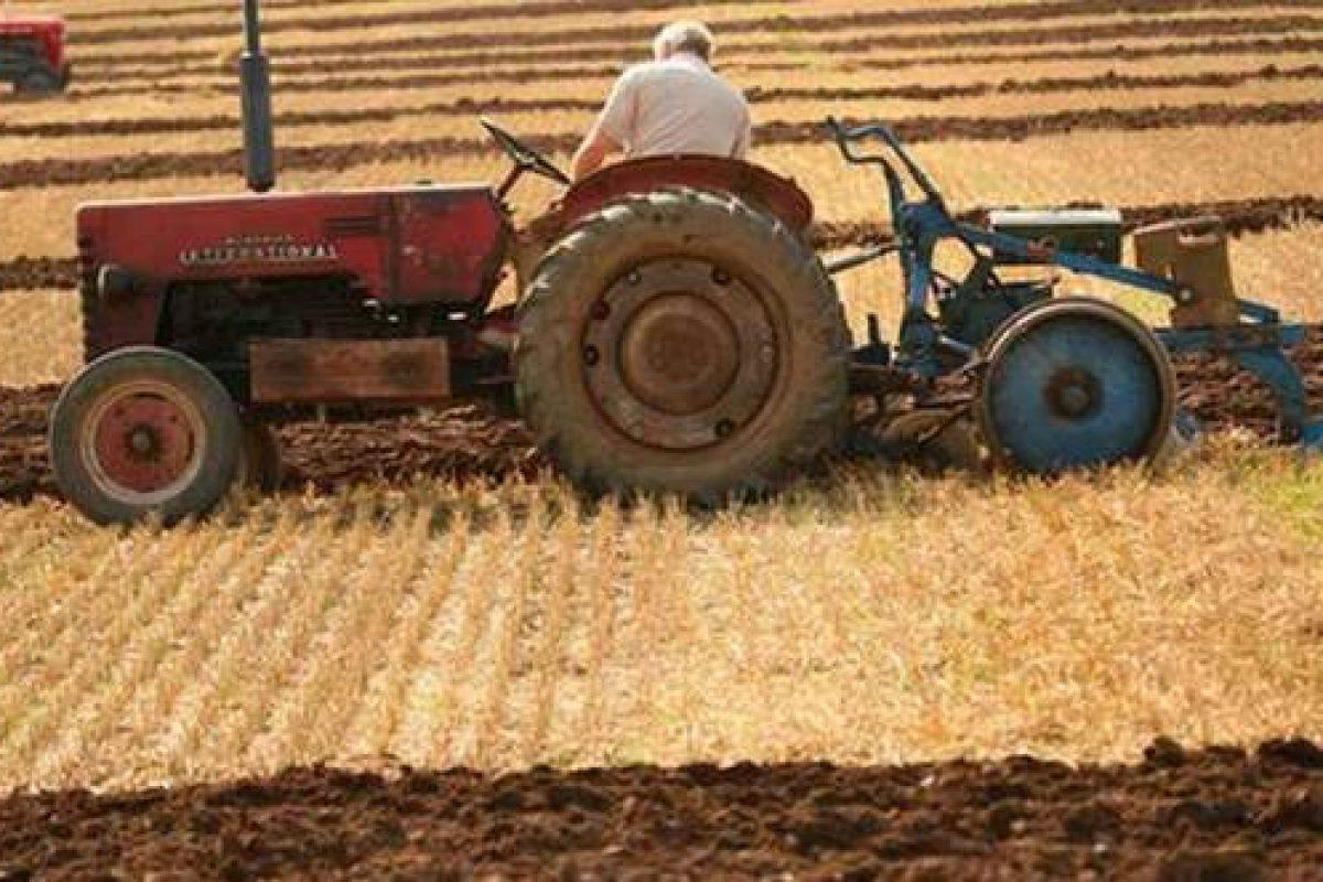 Ţăranii români sunt abandonaţi în favoarea marelui agro-business