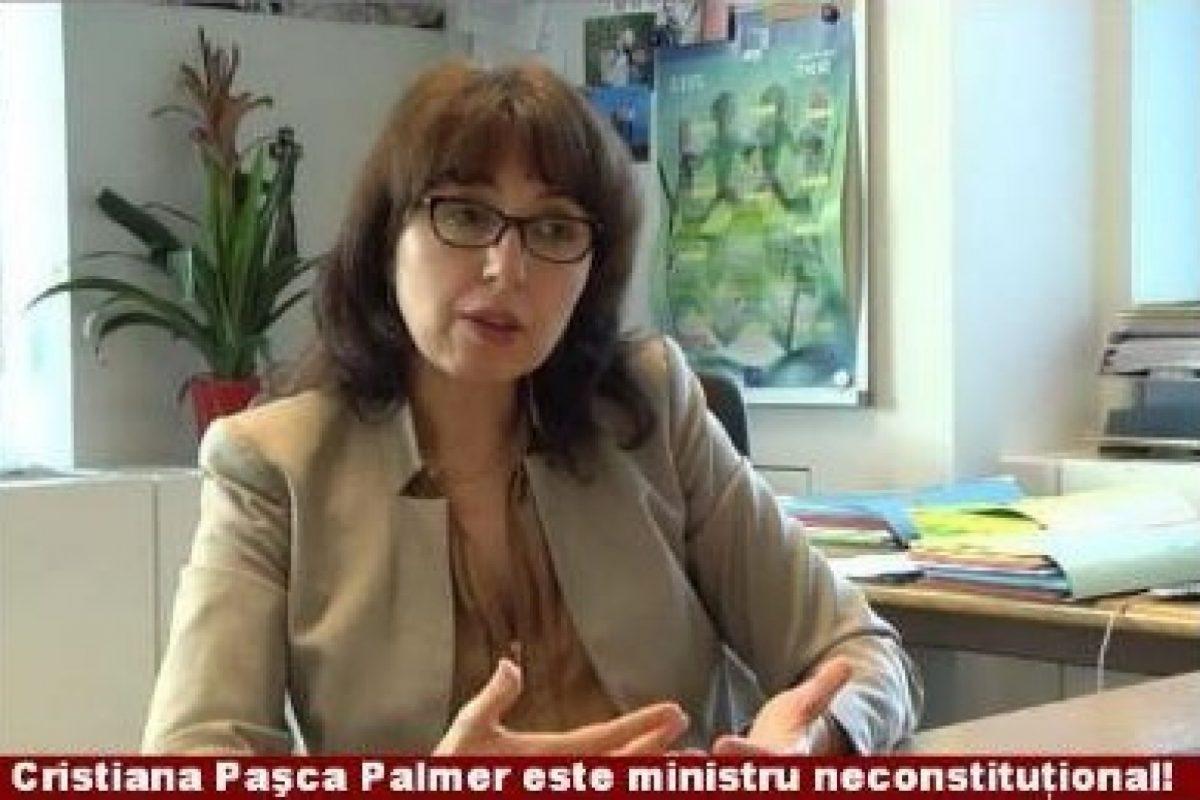 Numirea Cristianei Palmer ca Ministru s-a făcut prin încălcarea Constituţiei