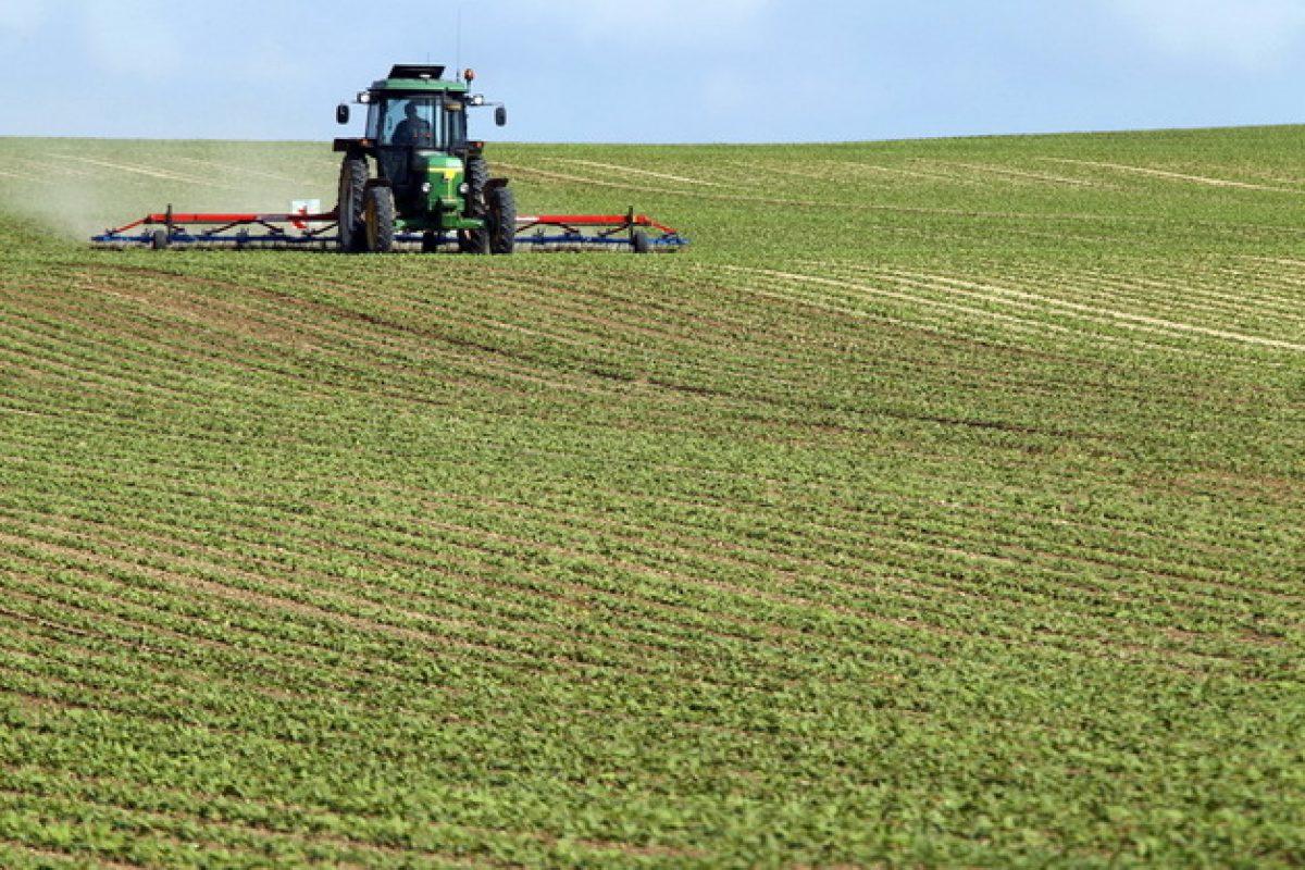 România-Ungaria: două abordări ale acaparării terenurilor agricole