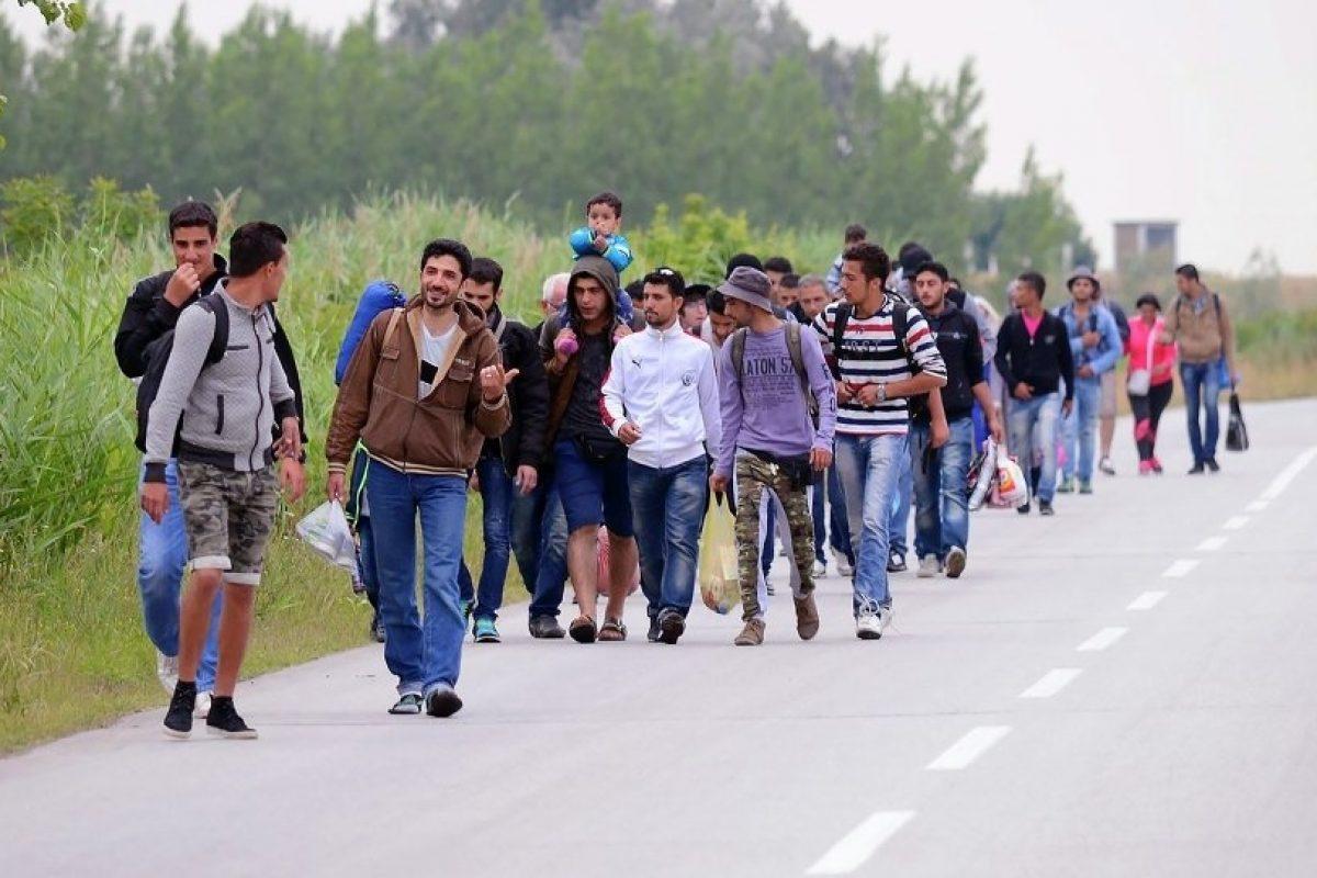 Xenofobi, imigranți și minarete în Elveția – o lecție pentru Est