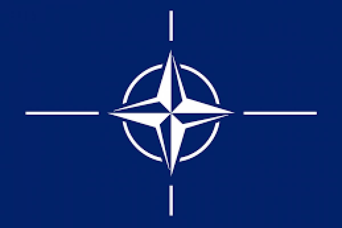 """""""NATO este o organizaţie criminală"""""""