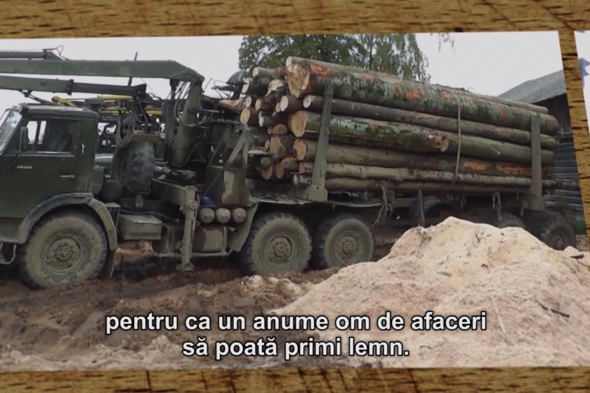 Un DOCUMENTAR-EVENIMENT a fost filmat un an în Munţii Carpaţi şi ARATĂ cine sunt ASASINII PĂDURILOR din România. DOVEZI CLARE despre CARTELUL LEMNULUI format din POLITICIENI şi INTERLOPI. Cine-i opreşte? l Video