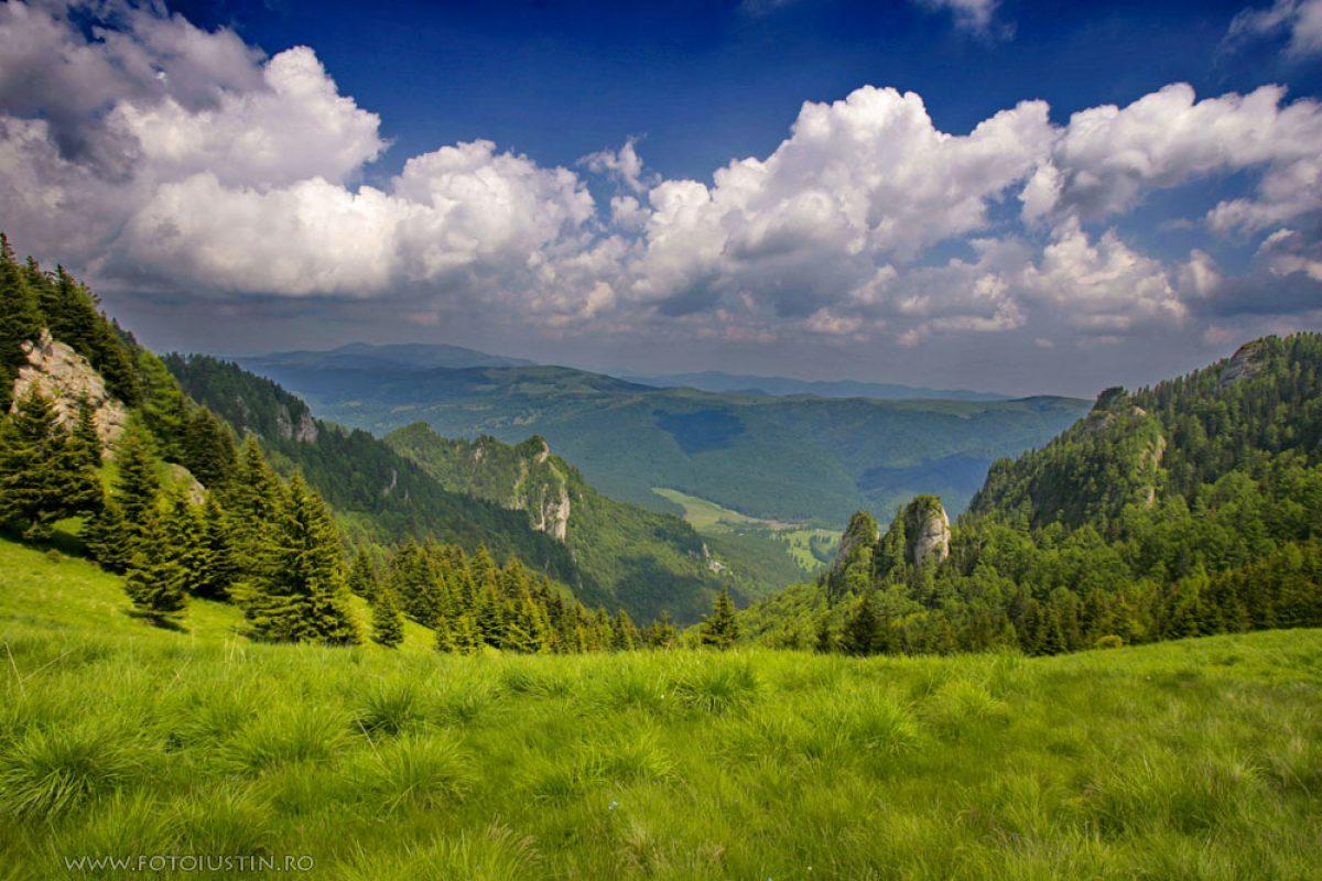 România, ţara care îşi vinde cel mai ieftin pământul