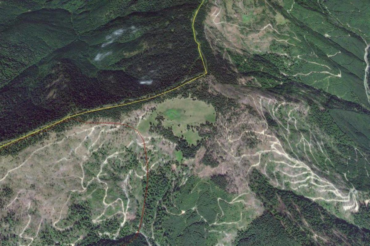 România, defrișată de austrieci! Unde sunt cele NOUĂ SERVICII SECRETE din România?